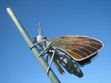 Essex Skipper Butterfly Sculpture, Colchester