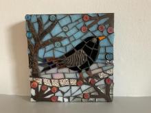 blackbird in winterland